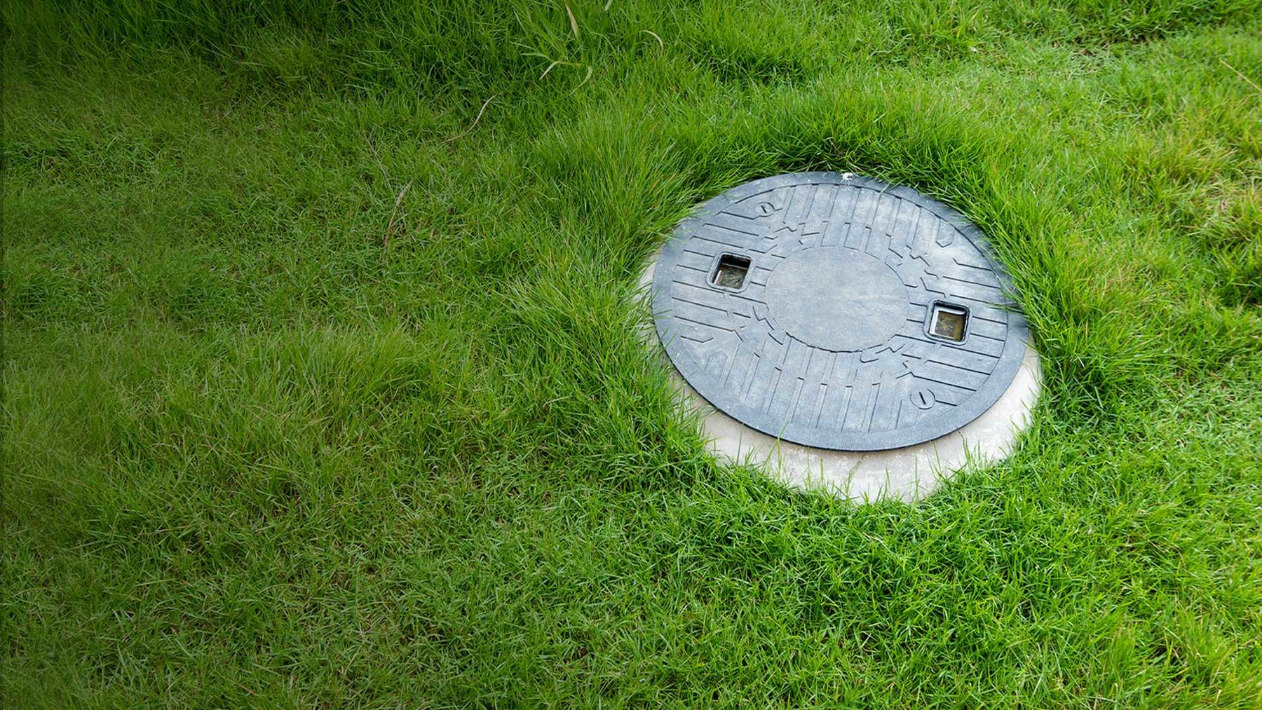 Septic system cover in a grassy yard